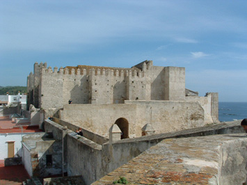 castilloguzman